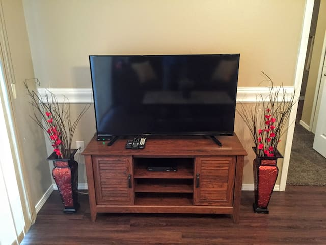 """50"""" Flat screen TV with smart DVD player in the living room."""
