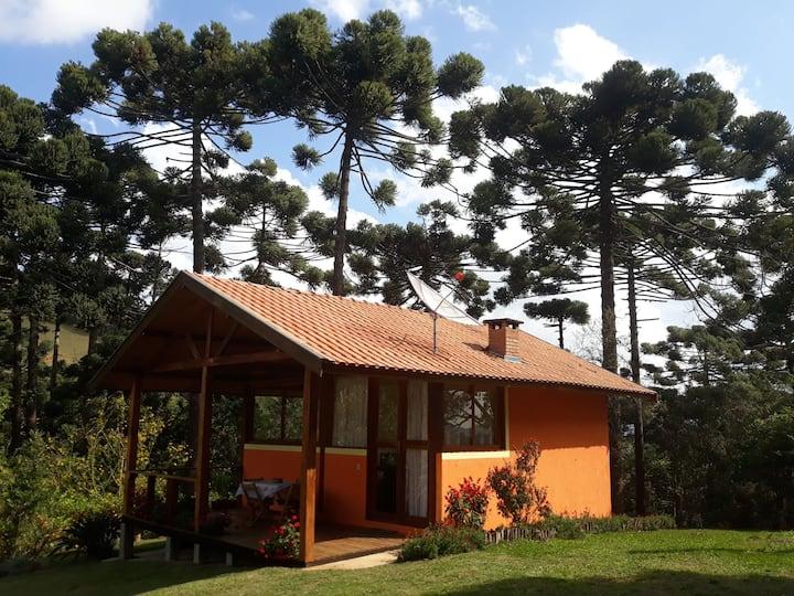 Chalé Bosque das Araucárias