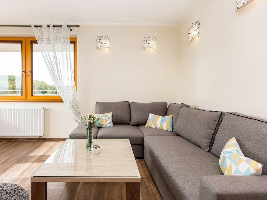 Salon z TV, Wi-Fi i sofą / Living room, TV, Wi-Fi, Sofa