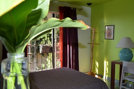 At the heart of downtown Oaxaca B&B - Oaxaca - Bed & Breakfast