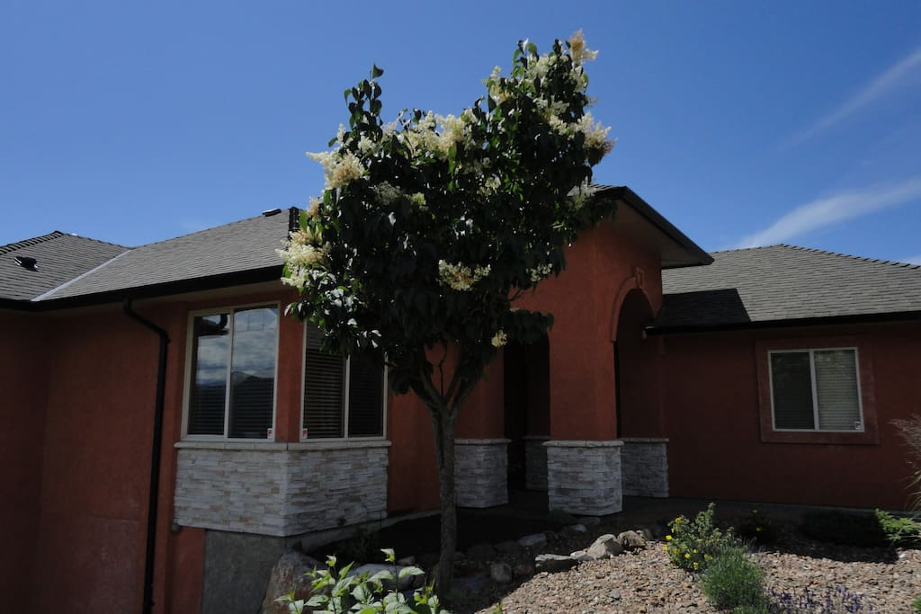 Newer home on quiet cul-de-sac. Beautiful Foothills subdivision.