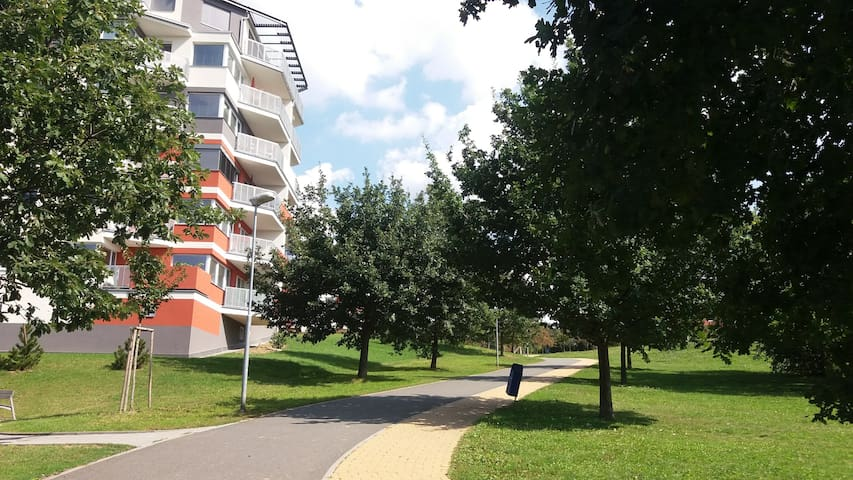 The nearby walking path will take you to the center of town (15 min walk) or the nearby forrest (5 min walk).