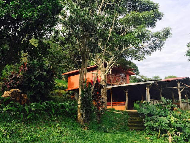 Valle Natural 2! New on Airbnb! - Alajuela - Cabaña