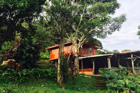Valle Natural 2! New on Airbnb! - Alajuela - Blockhütte