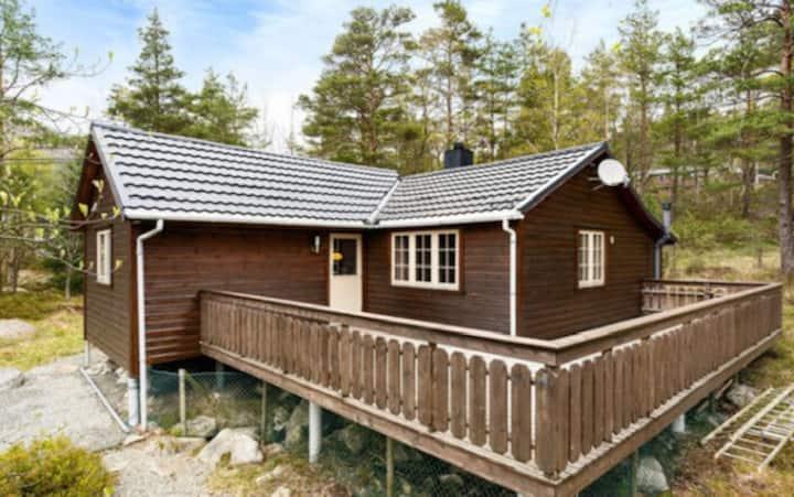 Lekker nyoppusset hytte med vann og strøm.