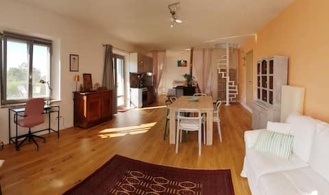 Charming Apartment, Maremmma, psy mile widziane.