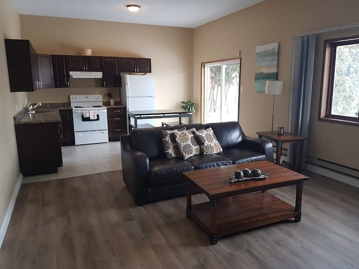 Large, Comfy, near Downtown and Uni