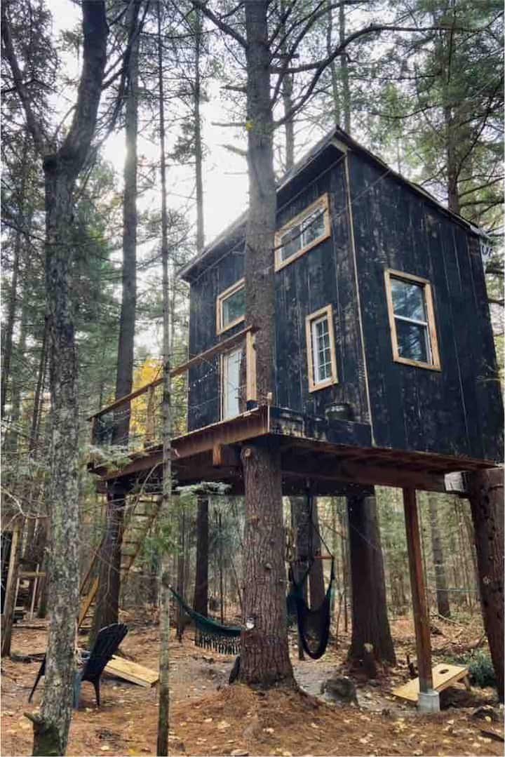 Magical Muskoka treehouse