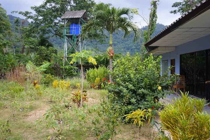 Haus mit Garten / Dschungel Panorama Strandnähe