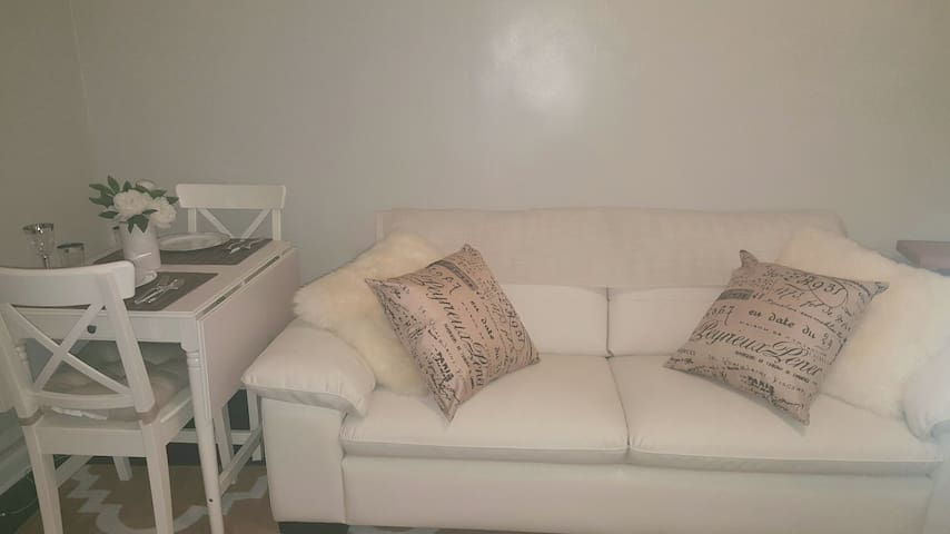 Afforable Master suite. Queen size bed & sofa. - Brooklyn  - Apartment