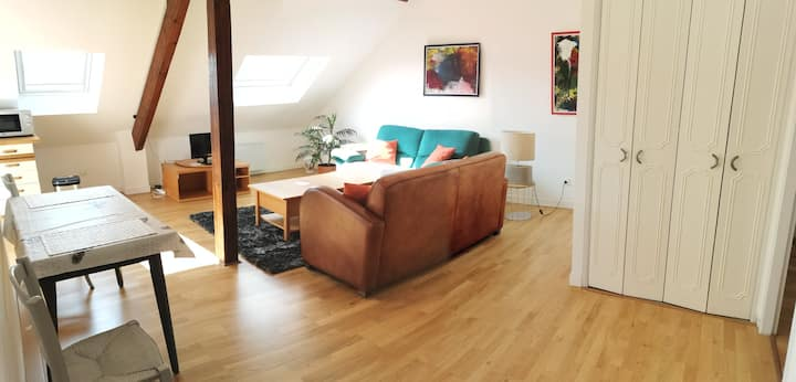 Appartement spacieux  67 m2 :  2 chambres .
