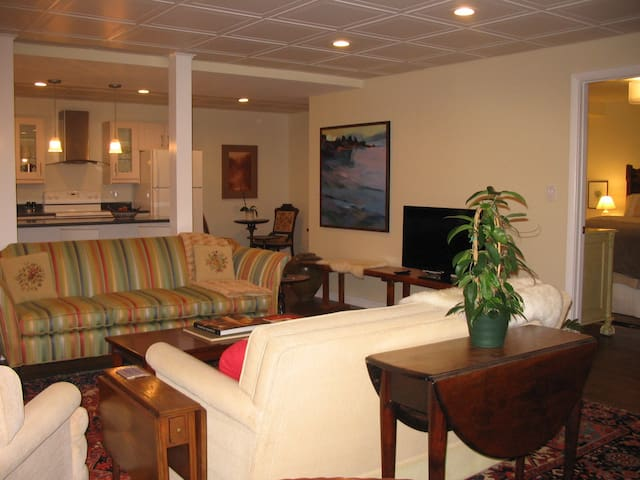 Luxury Modern 1BD Apartment