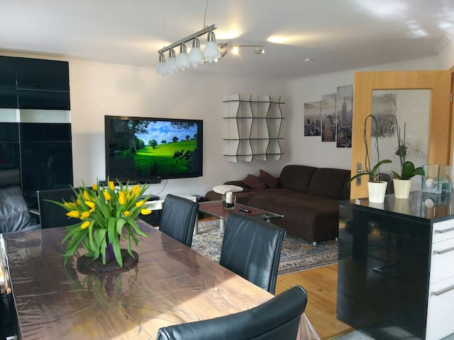 Beautiful 4 rooms apartment in Munich downtown