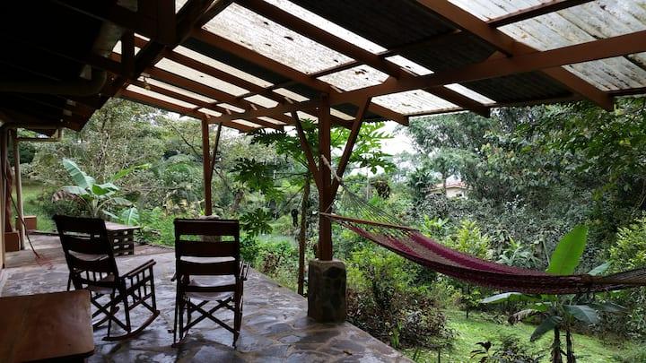 Casa La Isla - a birder's paradise