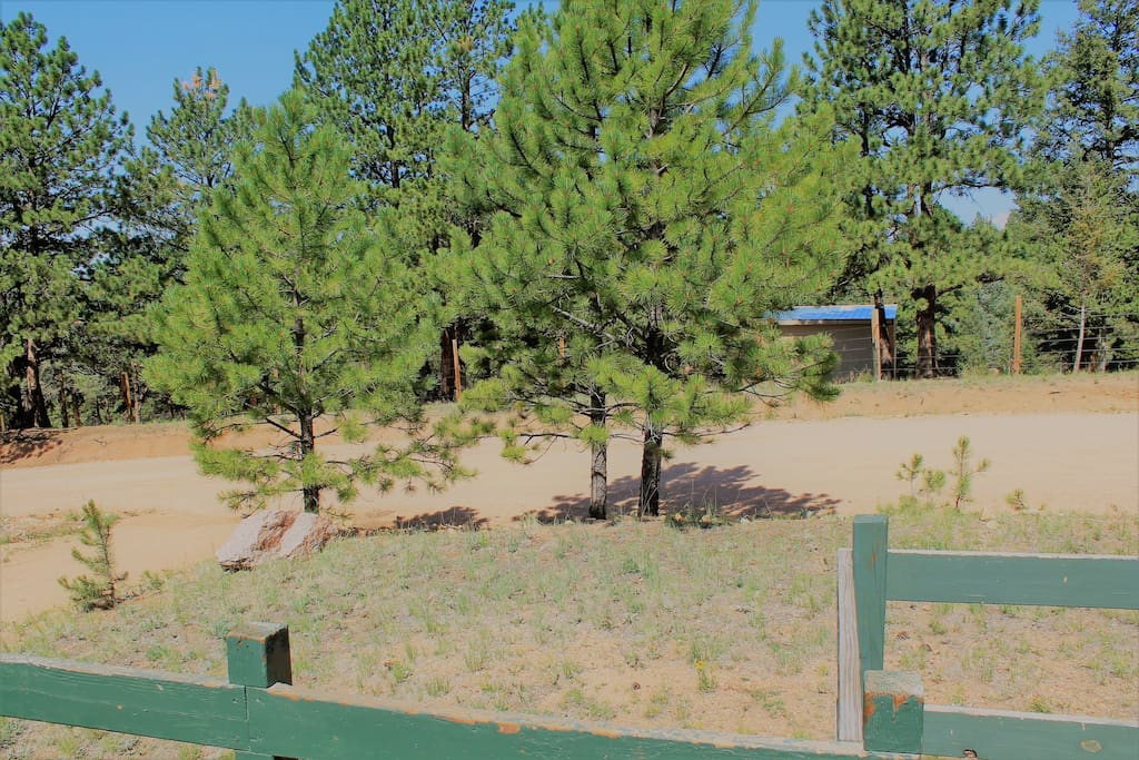 view from the deck, the cabin is located on the main ranch road