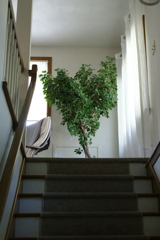 Upon entering the door, walk up the stairs to the airy loft.