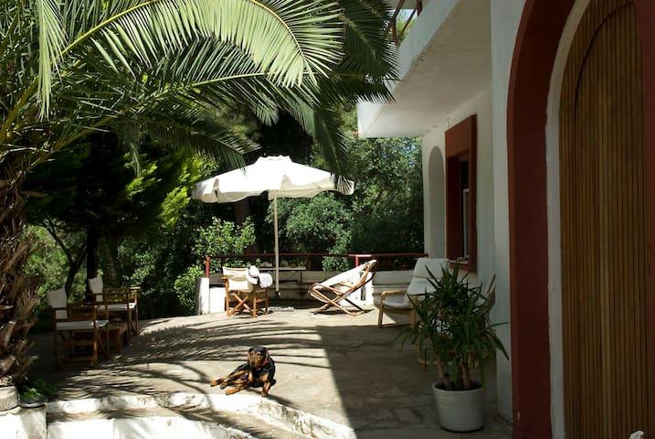 Spacious Villa close to an amazing Sithonia beach