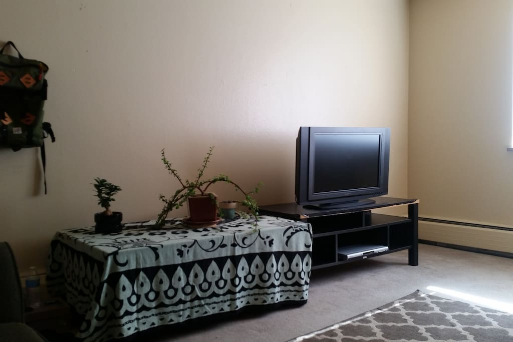 TV with HDMI cable for internet viewing