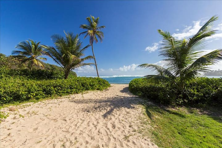 Villa Monse | Caribbean Beach Retreat | 2 Bed, 2.5 Bath | Direct Beach Access - Dorado - Villa