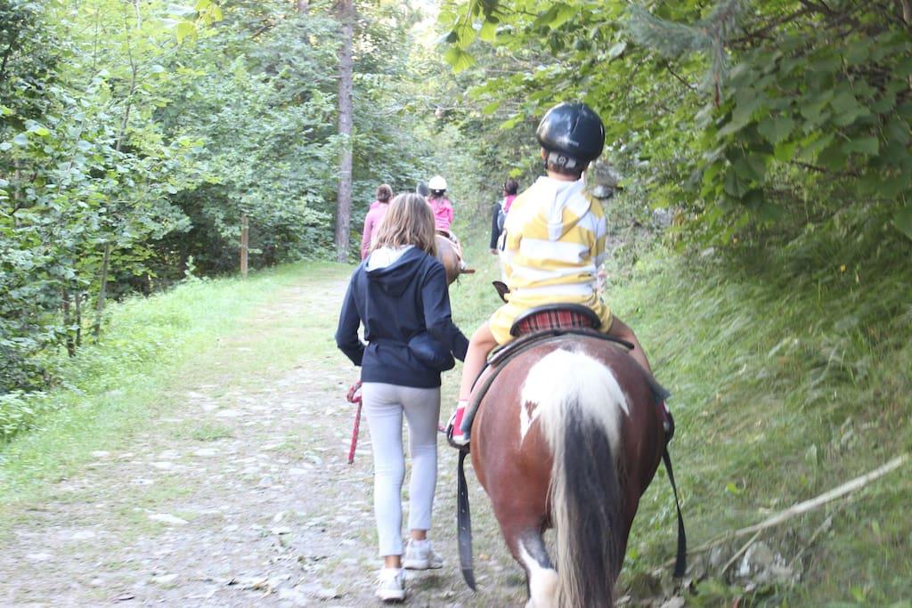 passeggiate a cavallo in Antey