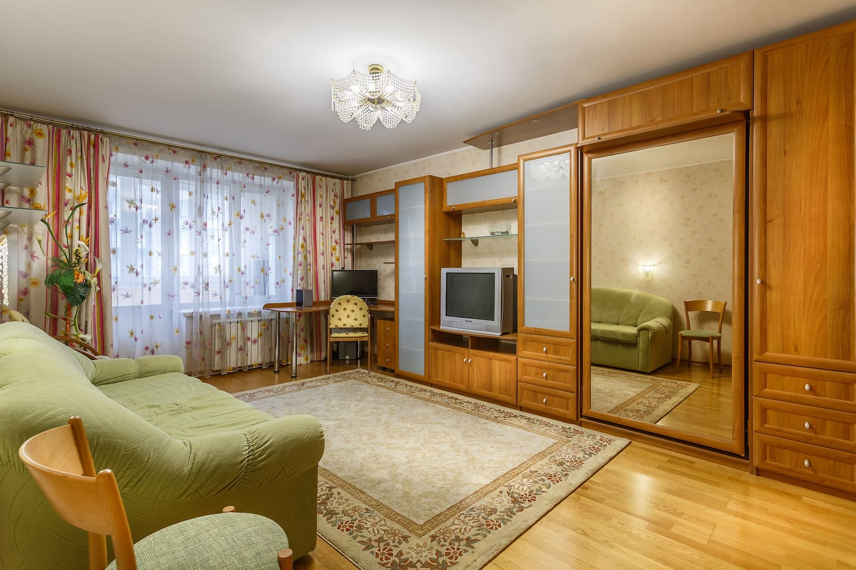 Комната с двухместным раскладным диваном и одноместной кроватью-зеркалом // Main room with double sofa bed and single murphy bed (combined with a full-height mirror)