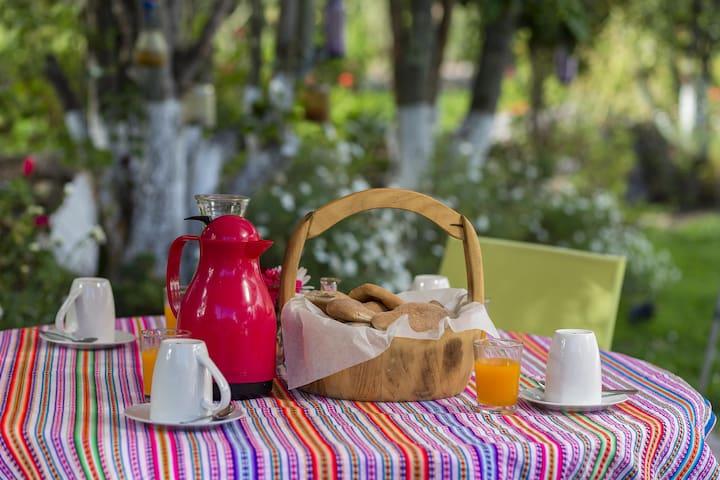 Todos nuestros servicios de hospedaje incluyen desayunos continentales.