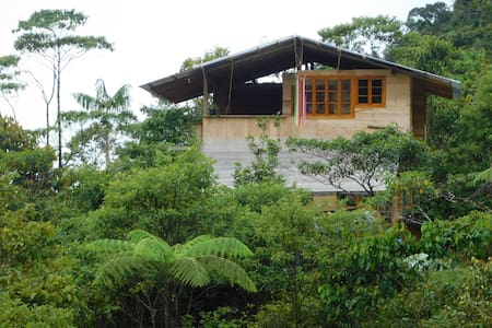Jungle Dave's Tours Farm Stay