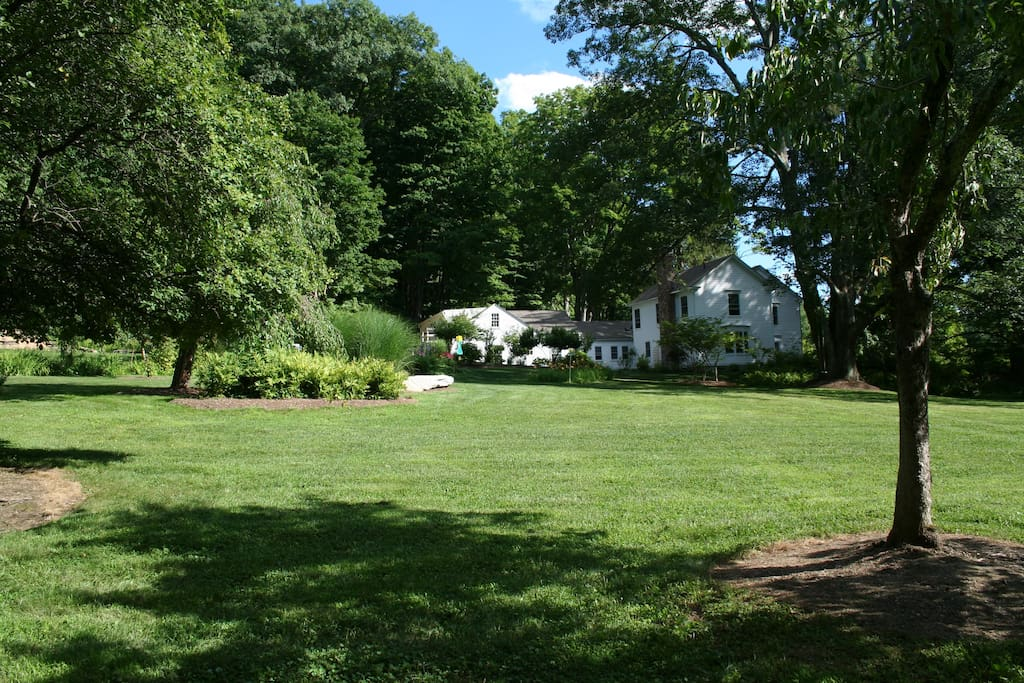 Our very spacious back yard, plenty of room for games or events!