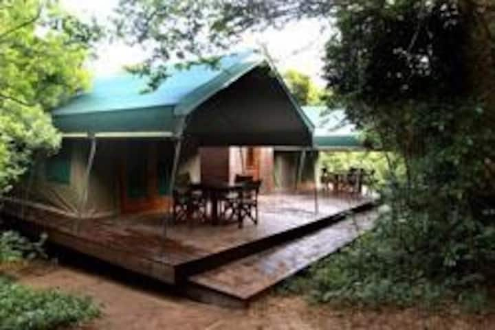 Beleia a Vista luxury tent # 1