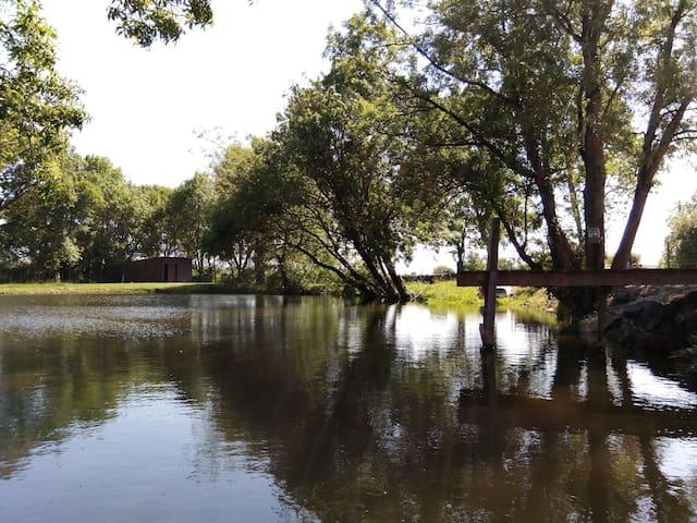 Côté étang