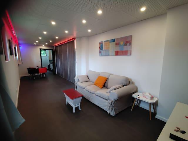 Metz 3* Apartment  : Calm, garden, parking