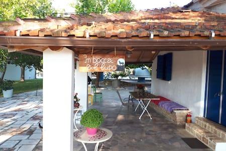 Archaia Ilida Estate
