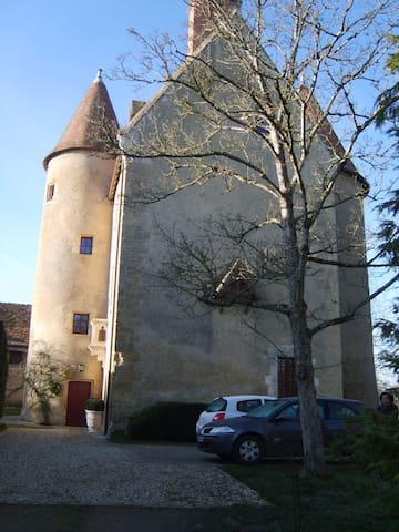 Trés belles chambres dans un château du XVIe - Thevet-Saint-Julien - Slot