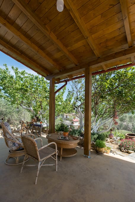 The yard at the east part of the house. The house is surrounded by nature and olive trees