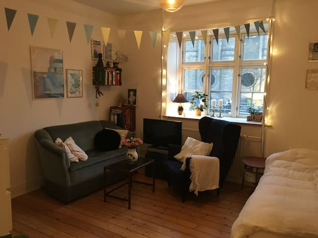 Cosy, newly renovated room in central Copenhagen - Kopenhaga - Apartament