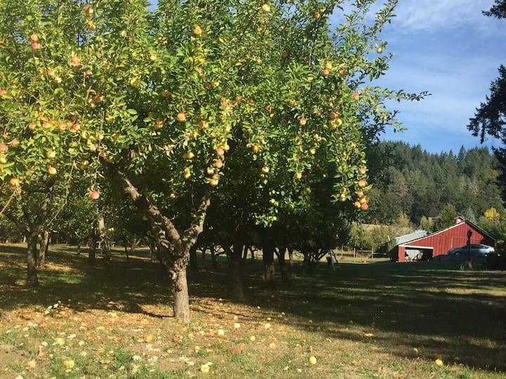 Fairlight Apple Farm