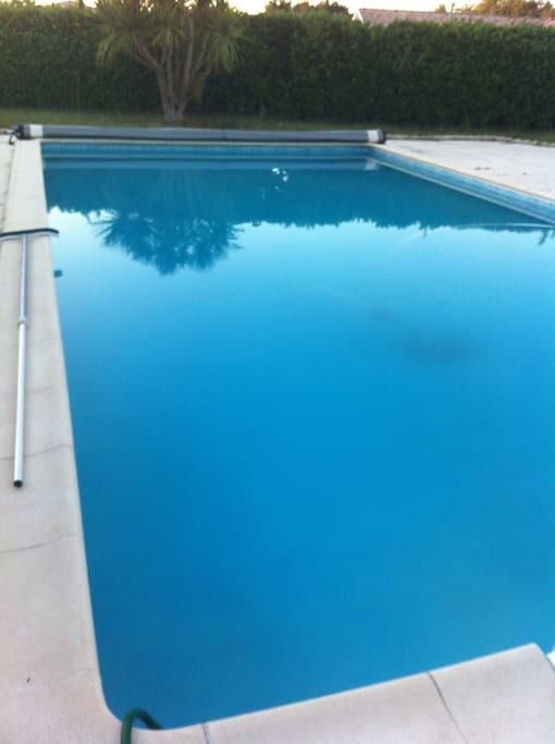 La piscine avec une grande terrasse( table et chaises disponibles ainsi que bains de soleil et la suite du jardin)