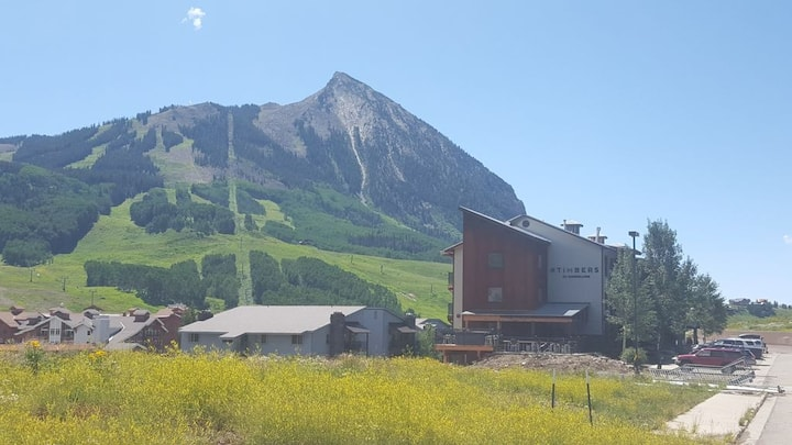 Mt. Crested Butte condo with mountain views