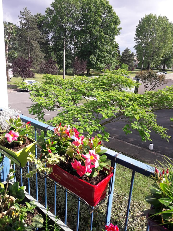 notre balcon fleuri avec vue sur parc ombragé, transat , tables et chaises permettent d'en profiter avec bonheur
