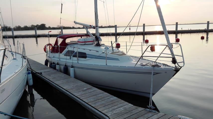 By the Sea Yacht. Kamień Pom. or Dziwnów - Dziwnów