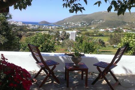 Andros, sunny, traditional villa - Andros
