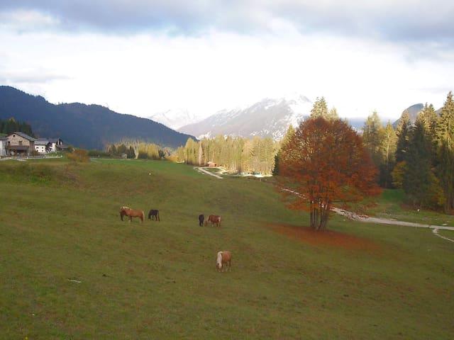 Casa immersa nelle Dolomiti UNESCO - Gosaldo - Byt