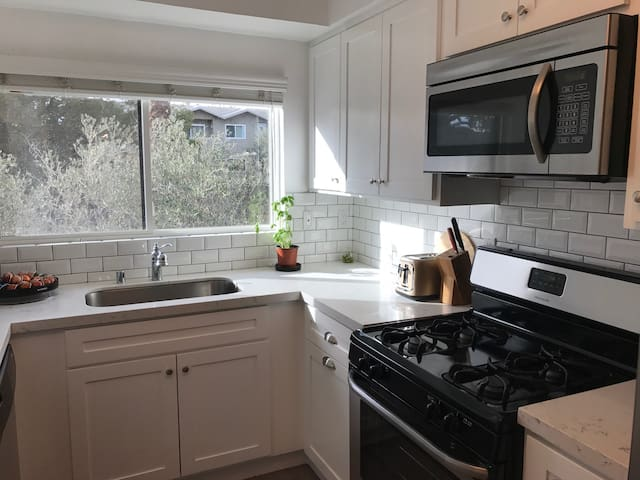 Beautiful Spacious Room in the Heart of Hollywood