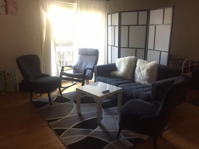 Sunny, Modern 1 Bedroom Apartment is Piscataway