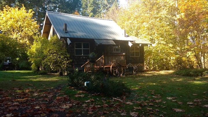 Cowboy Cabin at Tired Dog Ranch