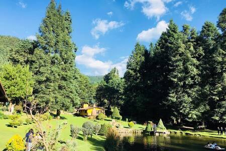 Cabaña rodeada de Naturaleza a 25 min de Santa Fe4