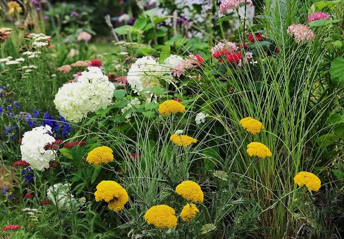 MIDamJae - DMZ area Garden Designer's Home