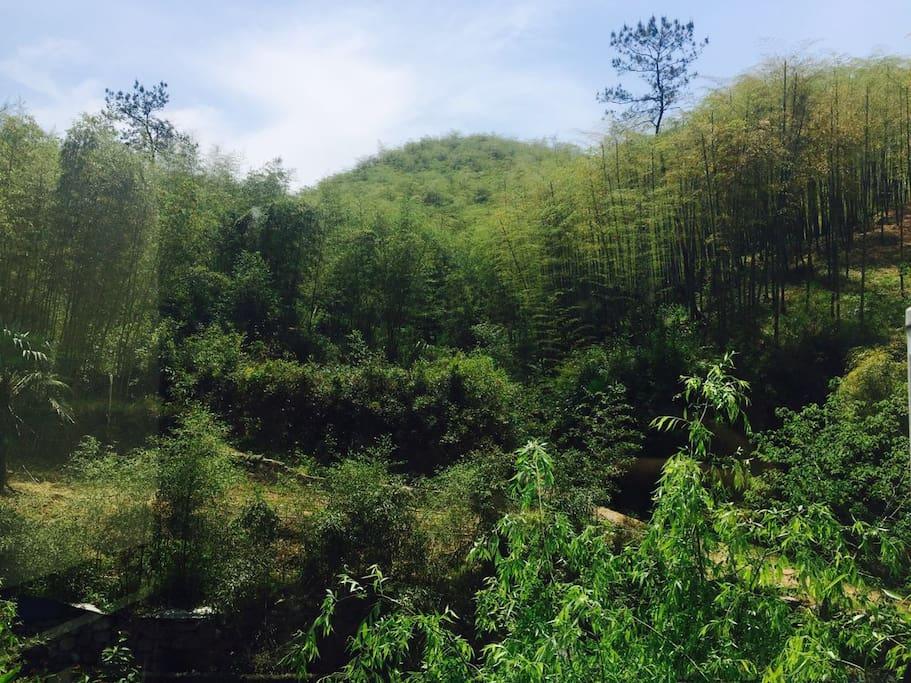 窗外的田园风景
