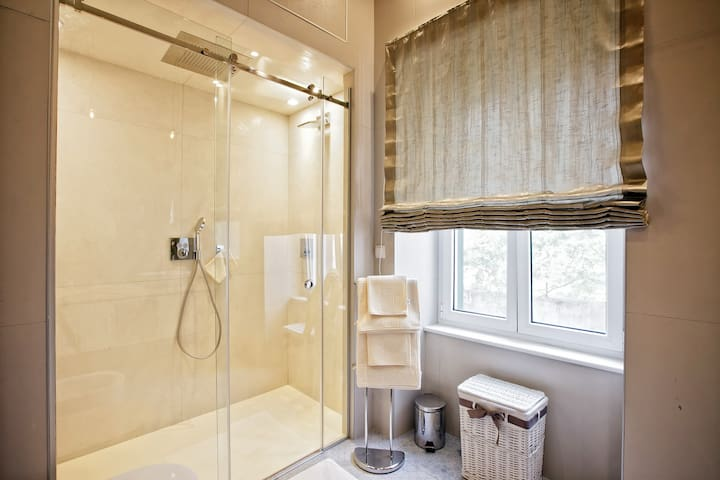 Luxury and modern bathroom with amazing shower