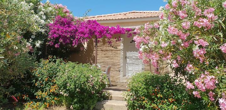 Moriani mini villa 500 m from sea